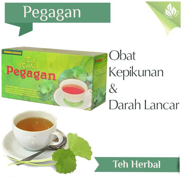Agen teh herbal pegagan murah surabaya sidoarjo