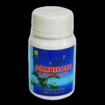 Distributor KAPSUL SAMBILOTO HERBAL INSANI murah Sidoarjo surabaya