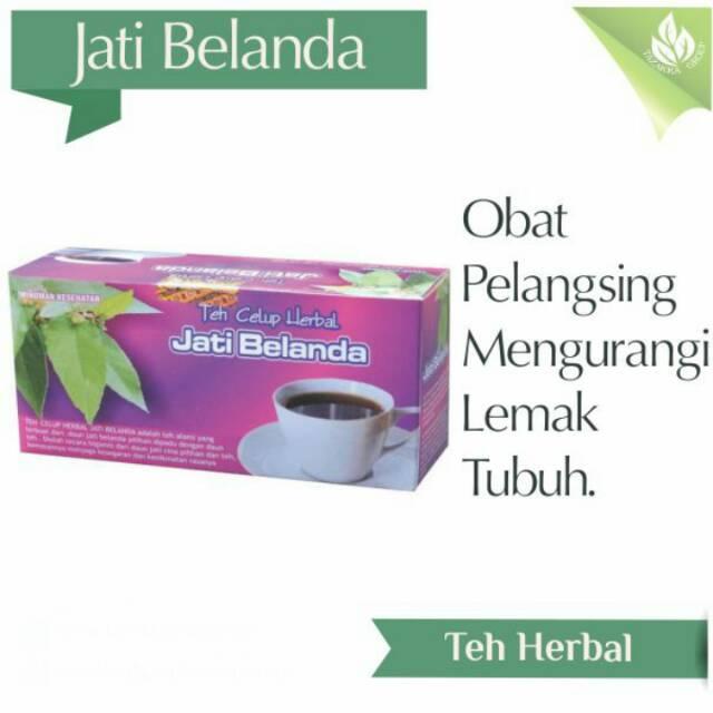 Jual Teh Herbal Jati Belanda Tazakka Asli Surabaya Sidoarjo