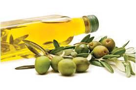 Olive Oil Jual Day Cream HPAI Surabaya Sidoarjo Mojokerto