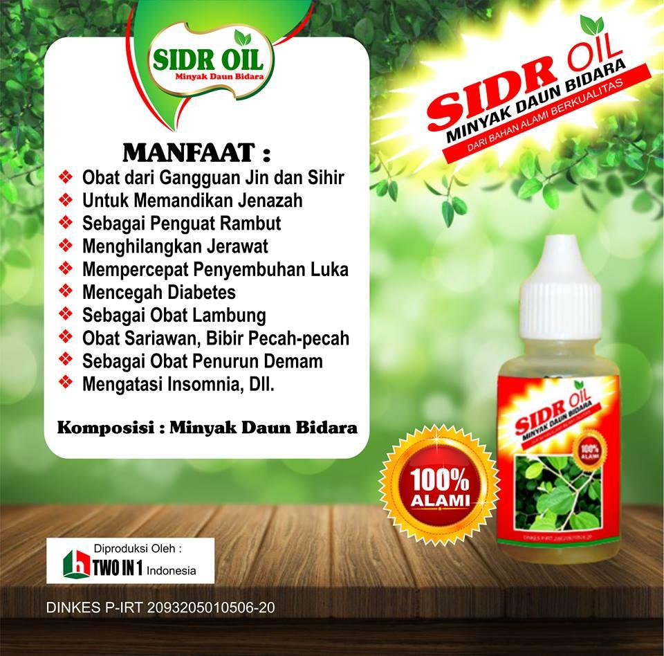 Distributor Minyak Daun Bidara Asli Murah Surabaya Sidoarjo