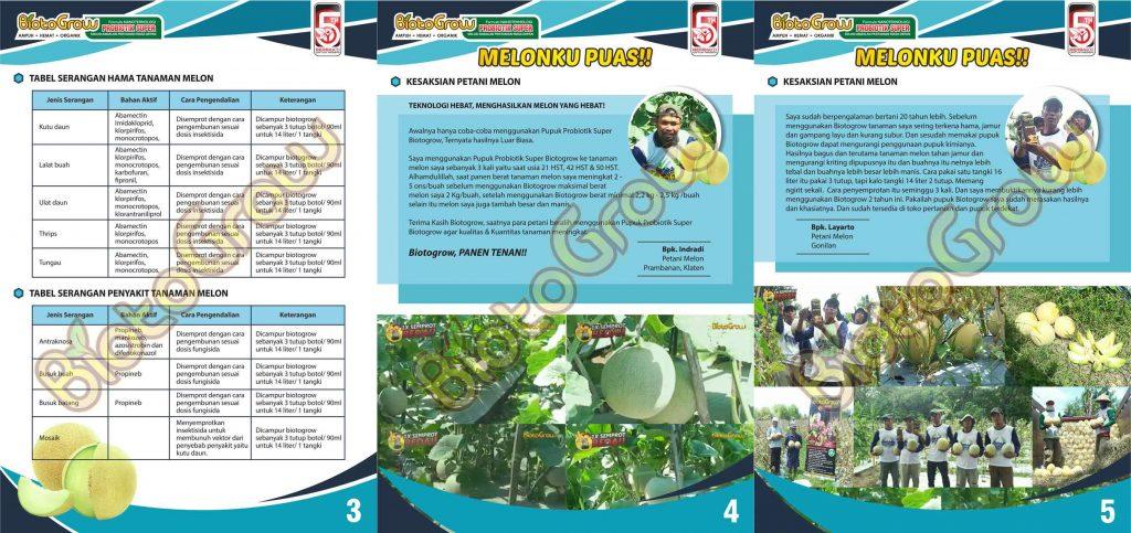 Jual Biotogrow Pupuk Organik murah Surabaya Sidoarjo panduan biotogrow melon 2