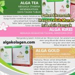 AKAT AGAT Paket Termurah Alga Gold + Alga Tea + Alga Kirei
